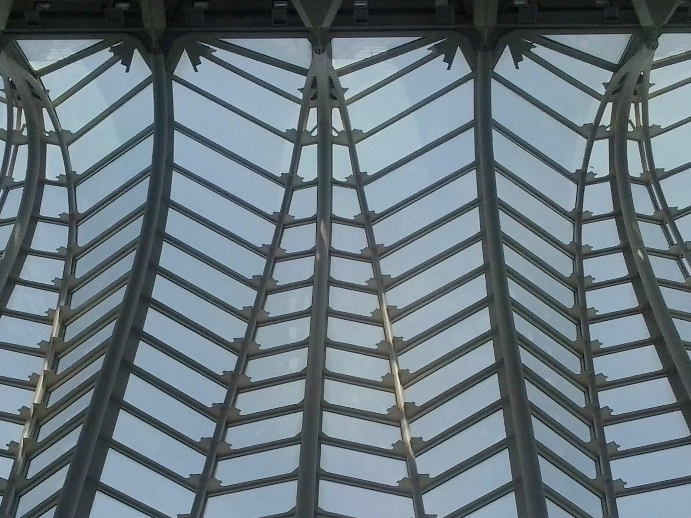 CalatravaCiudaddeScience
