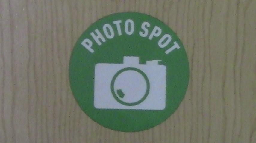 KoonsPhotoSpotFloor1